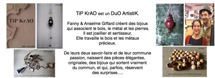 plaquette présentation TiP KrAO